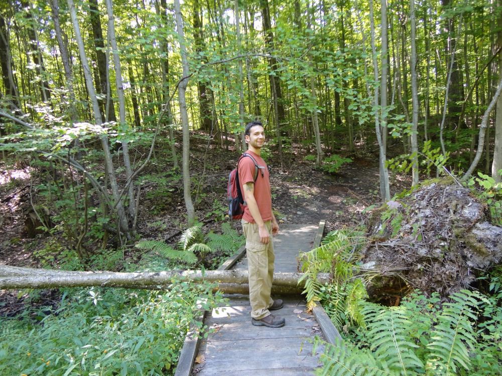 Sudden Tract has a Poison Sumac swamp - beautiful, if potentially dangerous!
