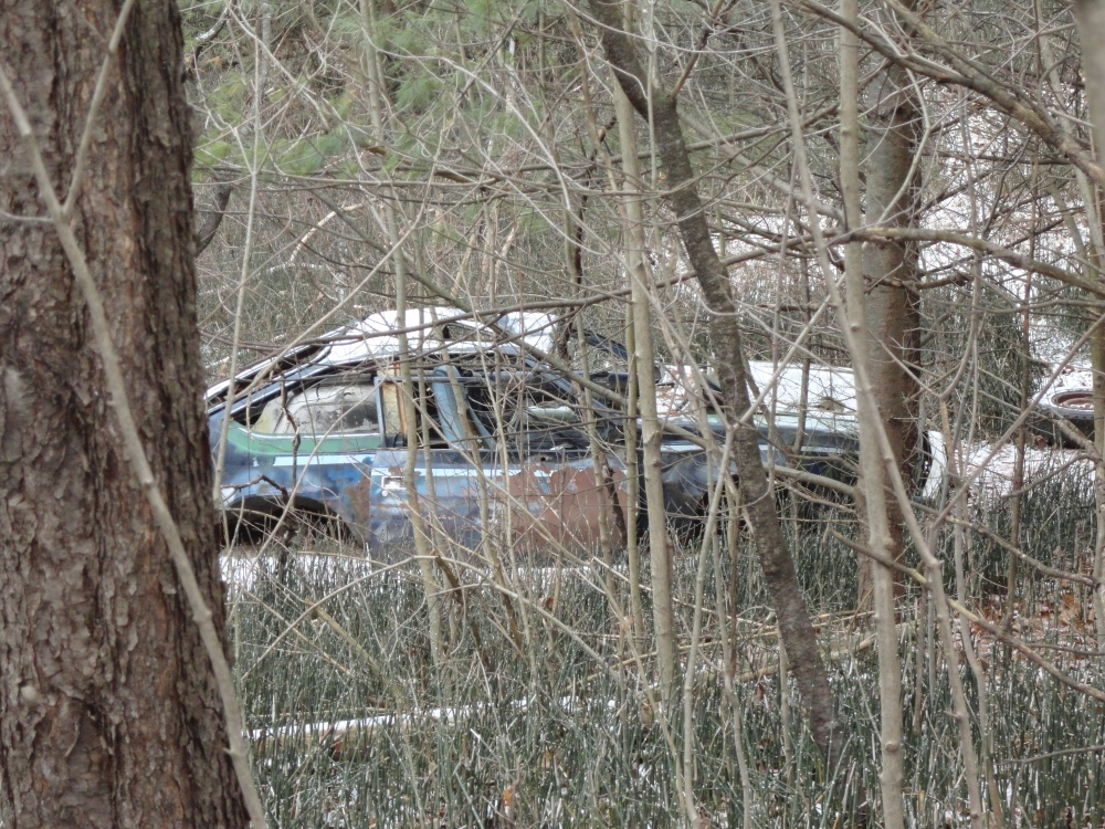An abandoned car hiding along the trails.