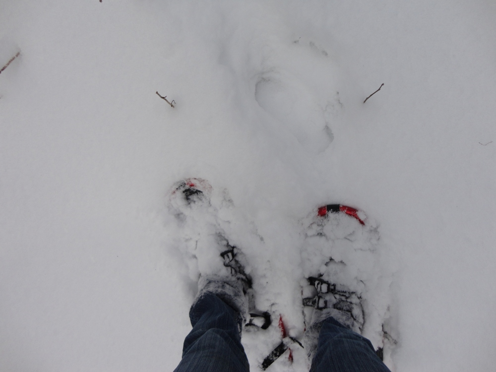 Snowshoes; the ultimate in travel accessories.