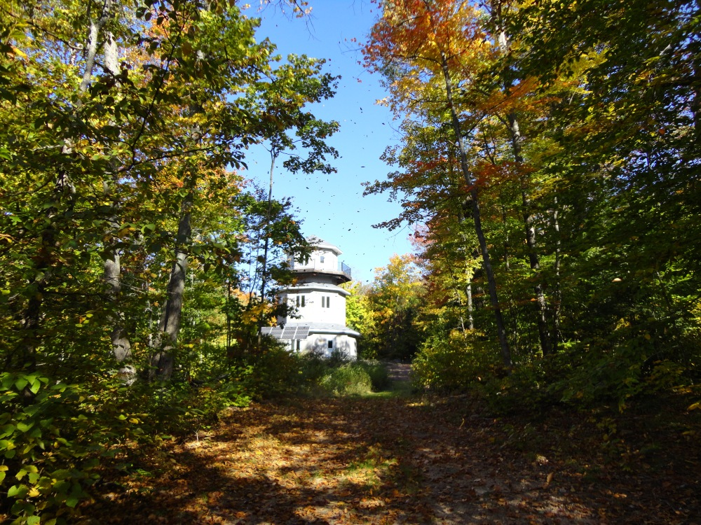 An observatory shrouded by trees.