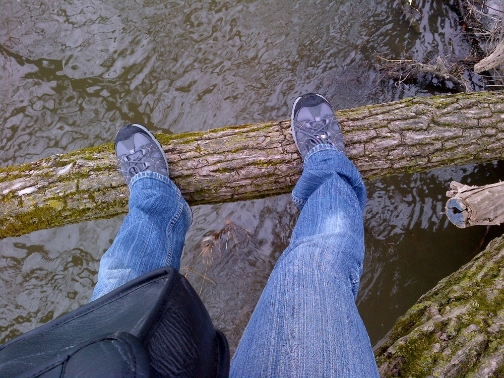 The author sits on a willow branch over the Speed River.