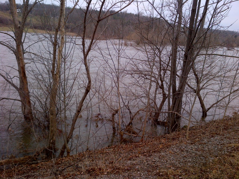 This year, the Grand River was flowing quite high and fast from a significant snowfall season.