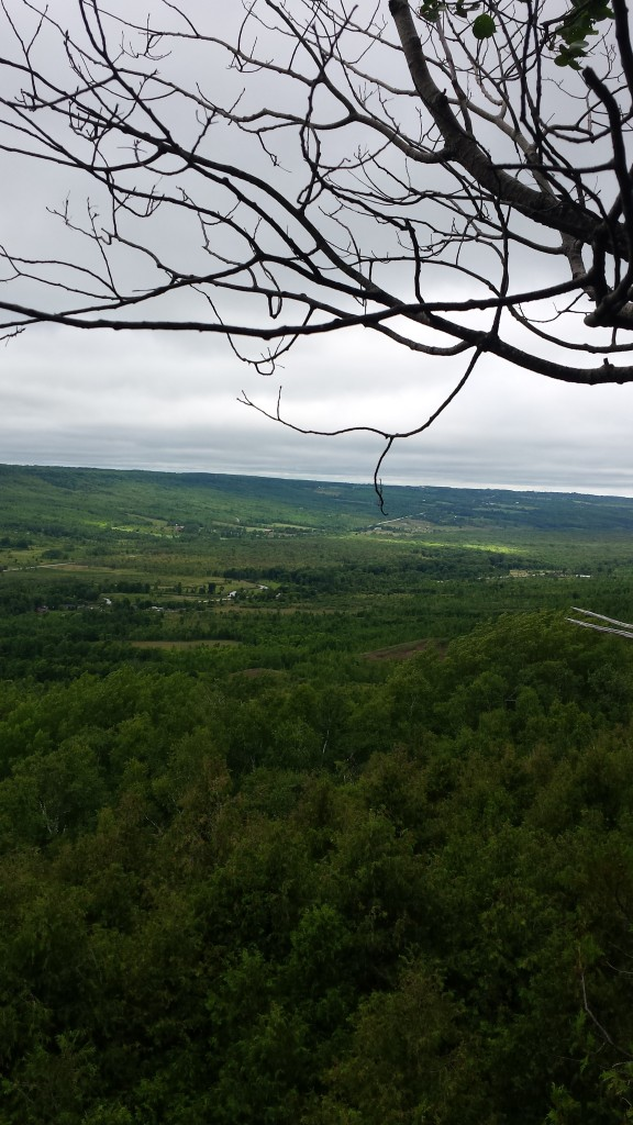 Looking out over the Beaver Valley.