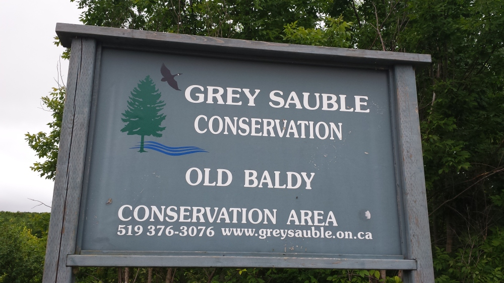 The sign at the trail entrance.