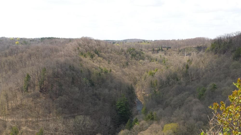 Amazing vista!