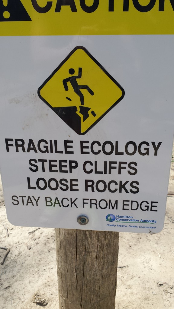 An important reminder that the ecology of cliffs can be fragile and vulnerable to human use.